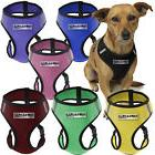 Pet Control Harness for Cat Dog Soft Mesh Walk Collar Safety