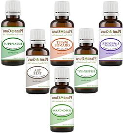 Essential Oil Set Basic Sampler Top 6 - 30 ml. (1 oz.} Aroma